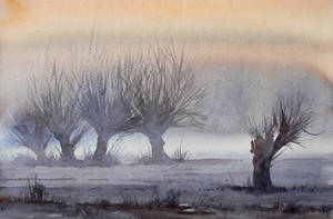 Willows by mashami