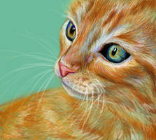 Kitten by xoxbabii-nisee