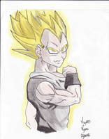 super saiyan vegeta by eminemer