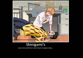bleach_shinigami by eminemer