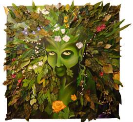 The Green by zandragon