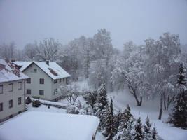Winter V by Bj83