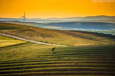Yellow Brick Road by AlecsPS