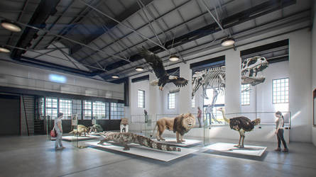 MUSEUM of NATURAL SCIENCE 2 by Bman2006