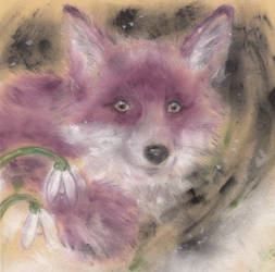 Fox by MinamiTakahashi