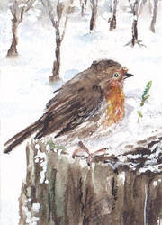 Winter Robin by MinamiTakahashi
