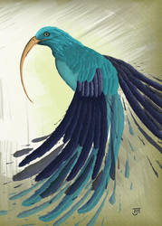 Bird-token by jobwell