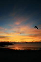 Sunset by Tallmanmike