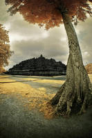 Borobudur Temple by Aerobozt