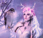 Winter Flower princess by HILIF