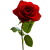 Rose Icon 8 By Redqueenallison-db5km2q by HILIF