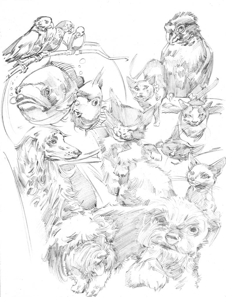 Mascotas by MGuevara