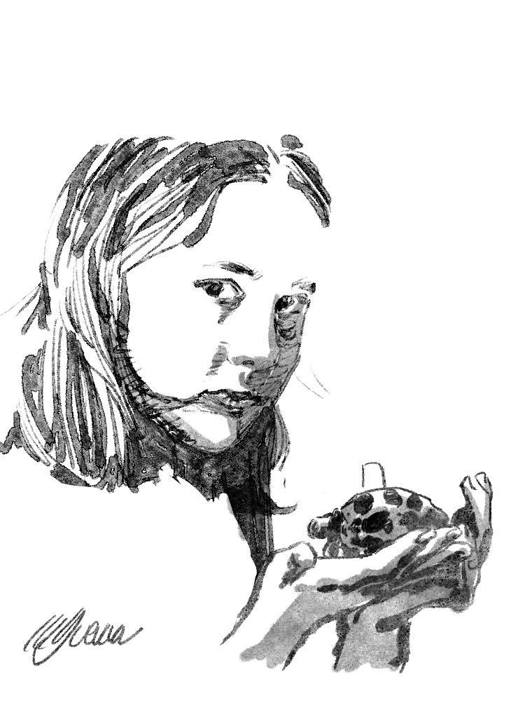 Turtle by MGuevara