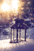 Snow dreams by Floreina-Photography