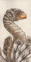 Caudipteryx bookmark by teriathanin