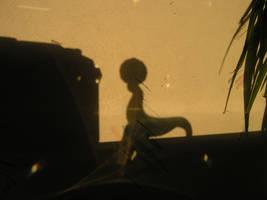 Crystal Seal Sun Shadow by Dowlphin