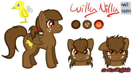 Willy Nilly Reference Sheet by DeviantArtist13