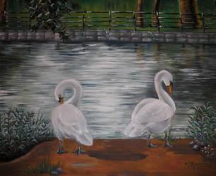 Swann Lake by Lyselle