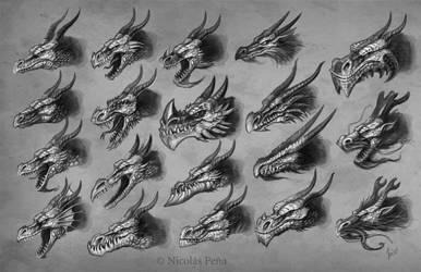 Dragons head by Amisgaudi