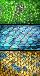 Scales by Amisgaudi