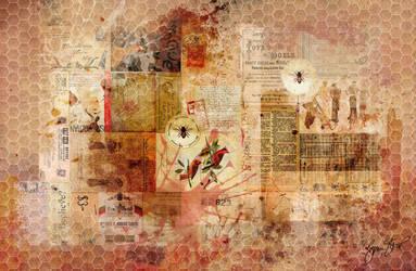 Honeycomb Collage by StarwaltDesign