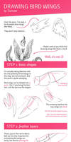 Tutorial: Drawing Bird Wings by Tiamate