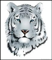 Le Tigre by jussta