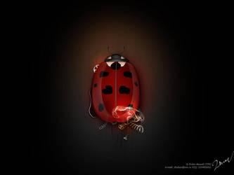 bug by TIT0