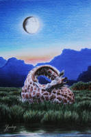 Sweet Dreams by Lenka-Slukova