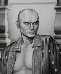 The King by Lenka-Slukova