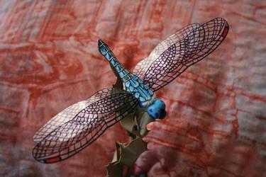 Dragonfly by Lenka-Slukova