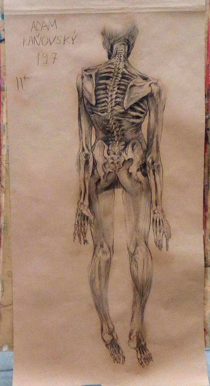 figure drawing by kanovsky