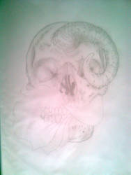 Flower-mouthed SKULL by Heauton-timorumenos
