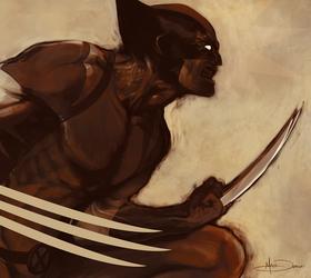 The Wolverine by MattDeMino