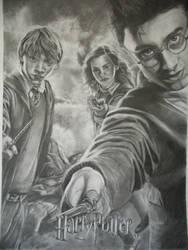 Harry Potter by AnoukR