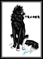 Trager by Seven--VII