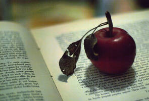 charming apple. by kamellie
