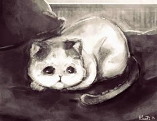 Ey, Kitty by HSanti