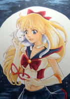 Codename: Sailor V by CoffeeCat-J