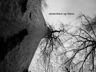 somewhere up there. by dybe