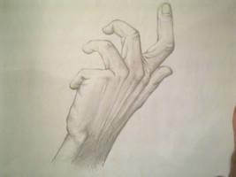 Man's Hand by TehWardy