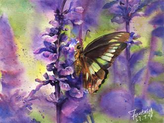 butterfly by mokmingfantasy