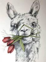 Llama with flowers by AshytakaHitawari