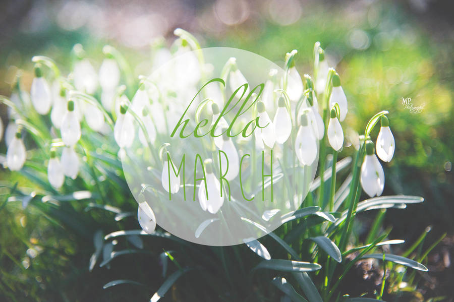 hello_march_by_miriampeuser_d78qi71-fullview.jpg