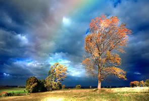 Rainbow by TwilightxGirl