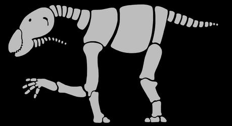 Patelligrade Skeletal by AntFingers