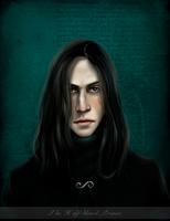 The Half-blood Prince by Patilda