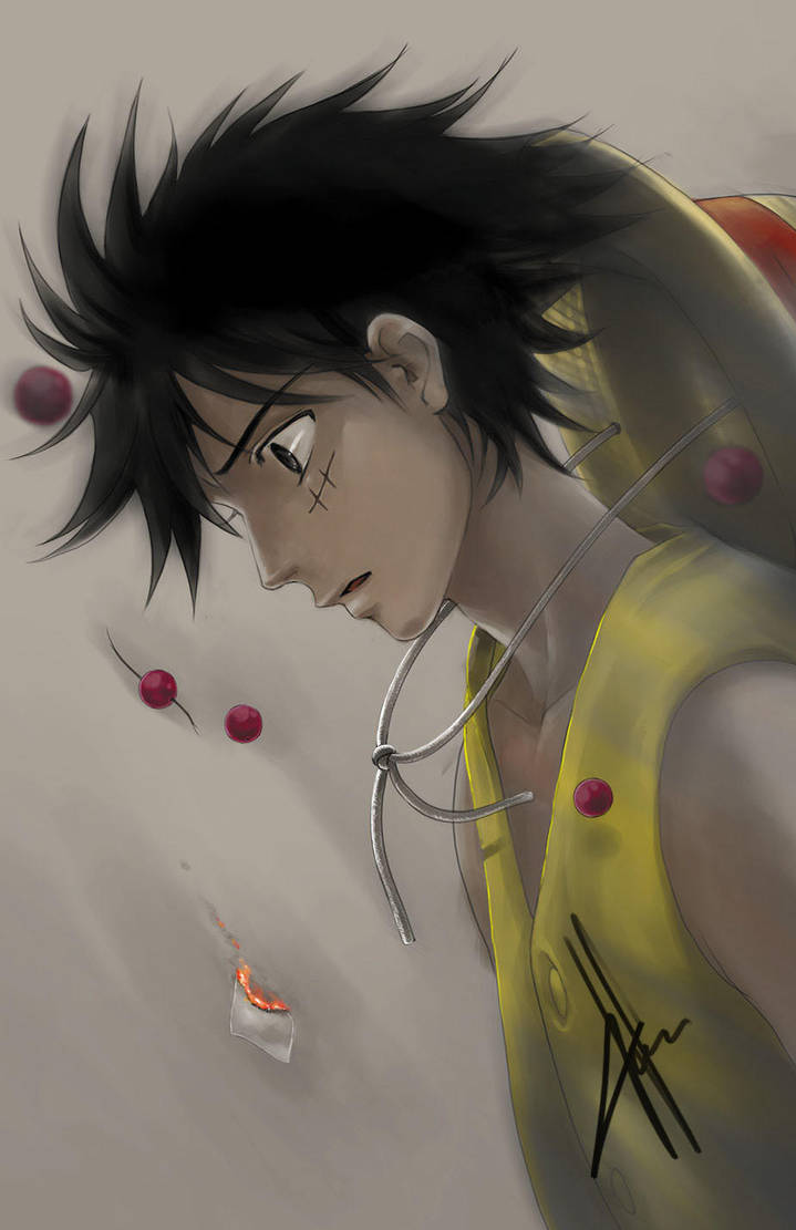 Thank You Luffy by morbidprince