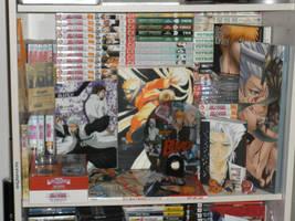 My Anime Shrine by FrozenSkies
