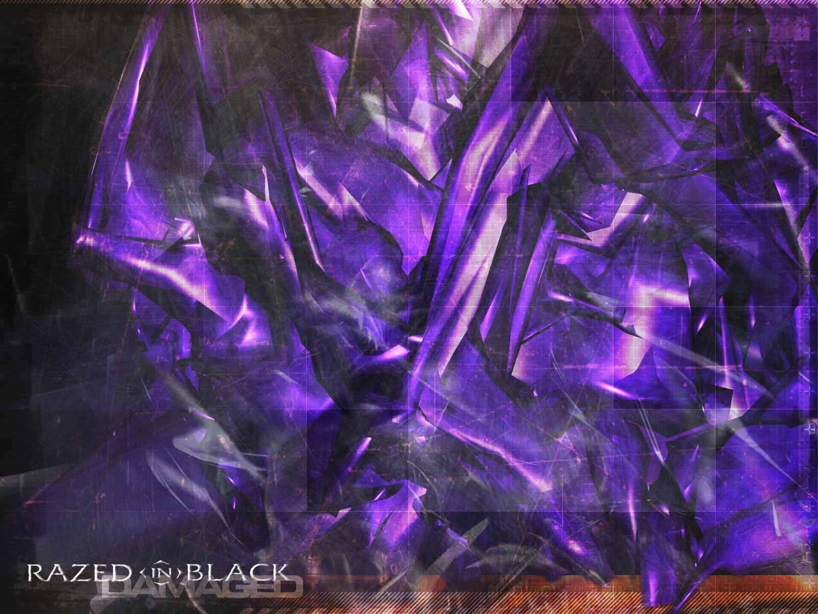 Razed in Black : Damaged by nott